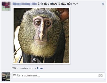 Trào lưu comment bằng ảnh tràn ngập Facebook 6