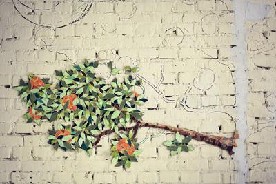 Trang trí nhà bằng gạch men hay ho và sáng tạo 4
