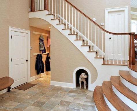 Dog House With Wifi Camaras