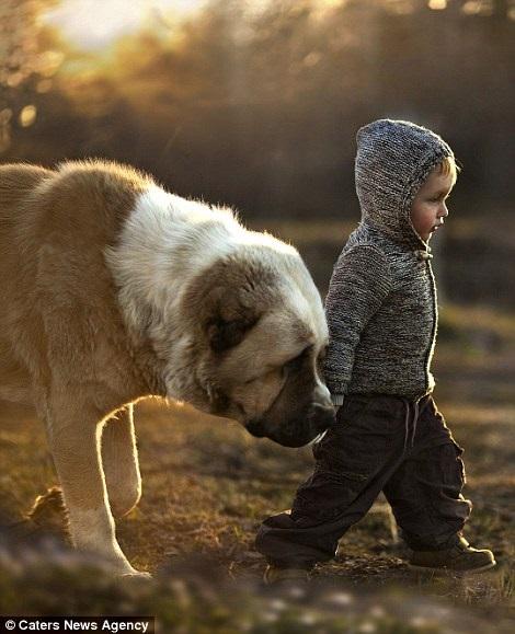 Bộ ảnh tuyệt đẹp của 2 cậu bé bên những loài động vật dễ thương 7