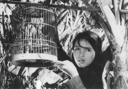 10 phim kinh điển của điện ảnh Việt Nam 7
