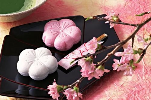 Nghệ thuật ẩm thực Nhật trong bánh wagashi 3