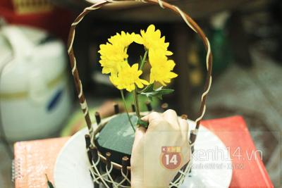 Xem nhanh cách cắm hoa cúc đơn giản 4