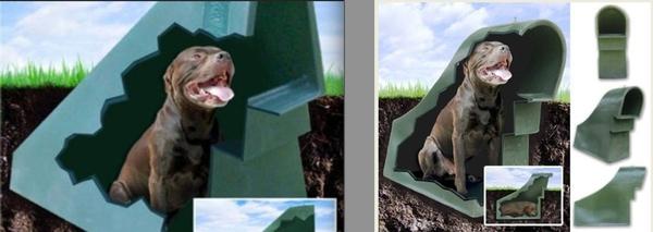 """Những ngôi nhà """"độc nhất quả đất"""" dành cho cún cưng 2"""