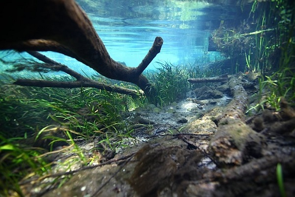 """Cảnh tượng tuyệt đẹp dưới những dòng sông """"trinh nữ"""" 10"""