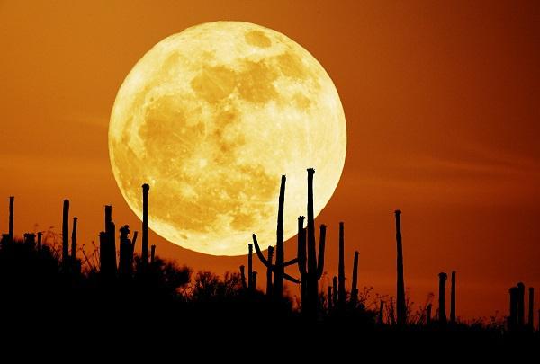 Trái đất sẽ ra sao nếu Mặt trăng biến mất 1
