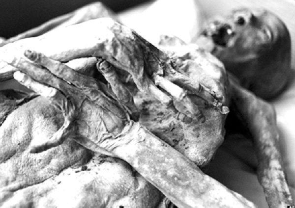 Cận cảnh quá trình phân hủy sau cái chết của con người 9