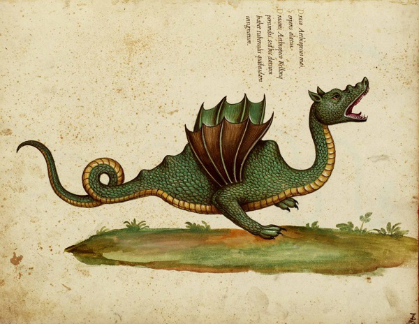 """Những ghi chép về loài rồng """"có thật"""" trong lịch sử 5"""