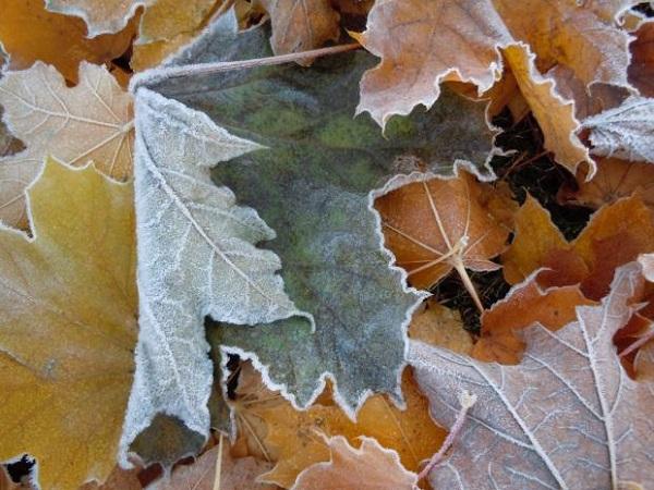 6 hiện tượng thiên nhiên tuyệt đẹp chỉ có vào mùa đông 1