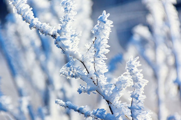6 hiện tượng thiên nhiên tuyệt đẹp chỉ có vào mùa đông 4