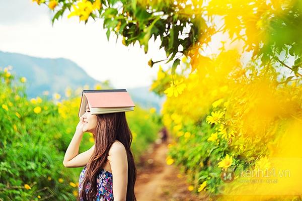 Ngỡ ngàng vẻ đẹp rực rỡ của mùa hoa dã quỳ Đà Lạt 1