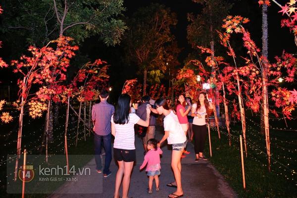 Sài Gòn: Ngỡ ngàng ngắm công viên sáng rực trong đêm với nửa triệu bóng đèn Led 25