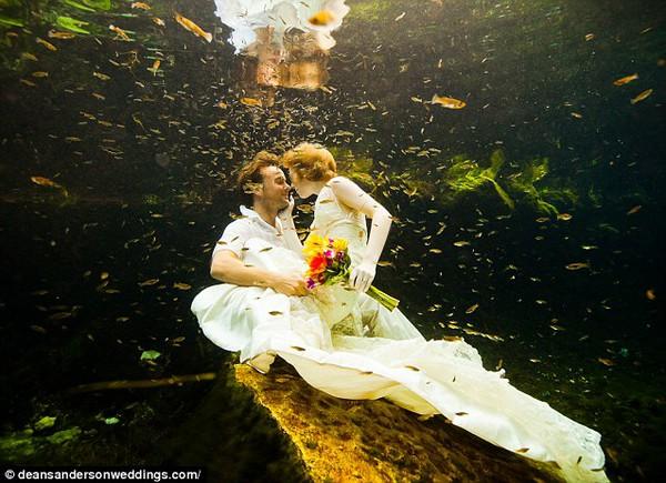Cặp đôi tổ chức đám cưới 66 lần khắp thế giới tiếp tục kết hôn lần thứ 67 ở New Zealand 12