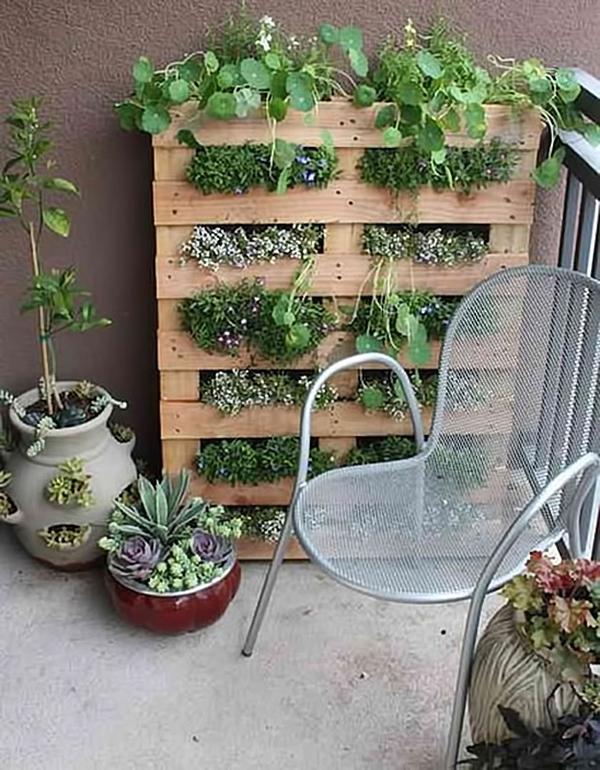 15 tuyệt chiêu trồng cây thông minh cho không gian chật hẹp 1