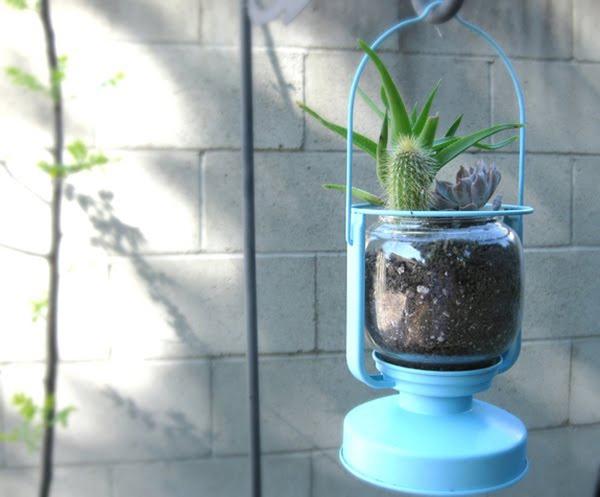 15 tuyệt chiêu trồng cây thông minh cho không gian chật hẹp 9