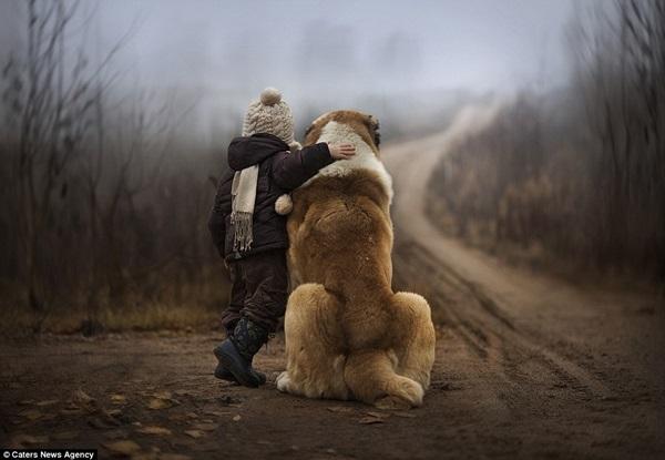 Bộ ảnh tuyệt đẹp của 2 cậu bé bên những loài động vật dễ thương 4