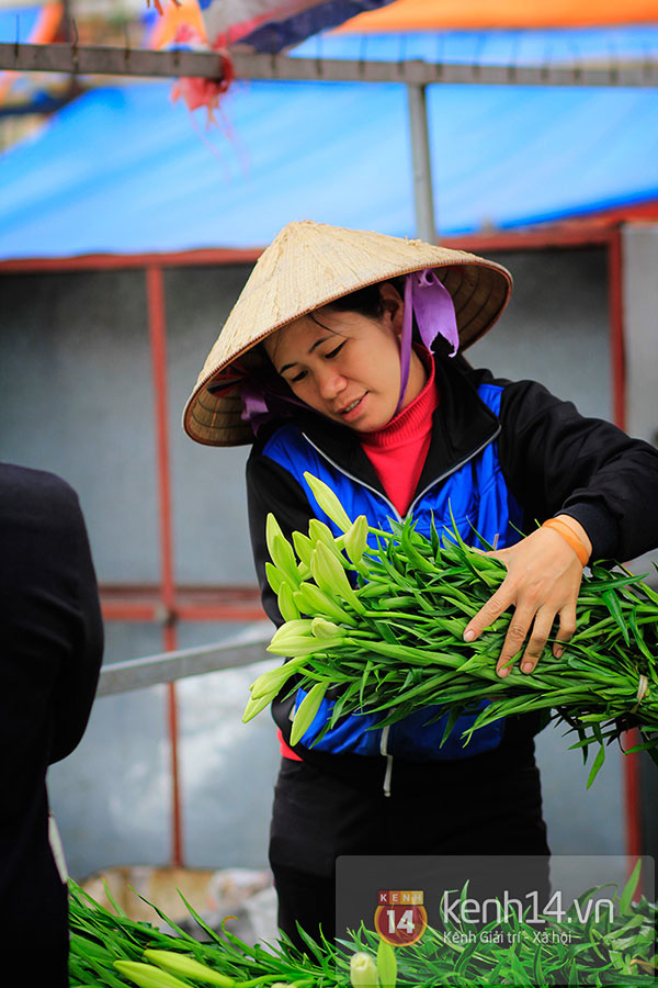 Tháng 4, hoa loa kèn trắng lại rong ruổi khắp phố Hà Nội 6