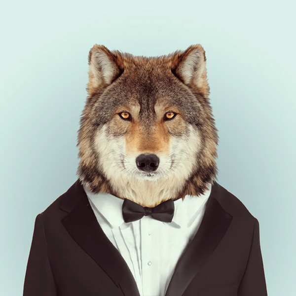 Sáng tạo hài hước biến động vật thành... trò cười 15