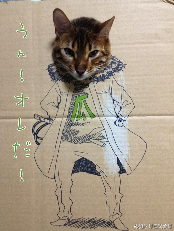 """Loài mèo biến hình qua những sáng tạo """"buồn cười"""" 3"""