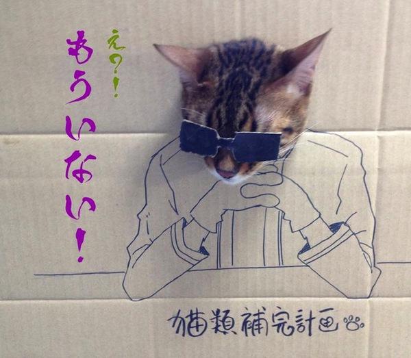 """Loài mèo biến hình qua những sáng tạo """"buồn cười"""" 6"""