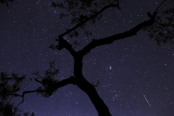 """Ảnh độc: Mưa sao băng Perseid """"tấn công"""" Trái đất 8"""