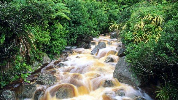 Ngỡ ngàng với phong cảnh tuyệt đẹp tại đảo Nam New Zealand 18