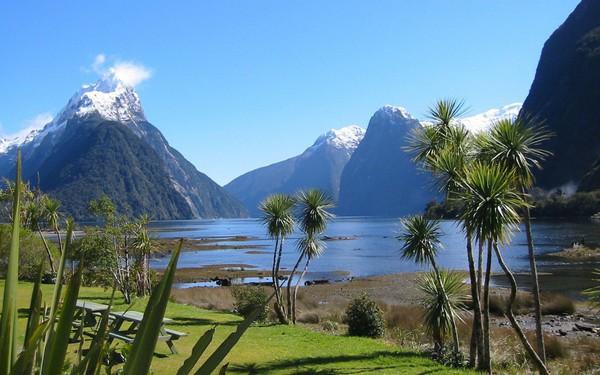 Ngỡ ngàng với phong cảnh tuyệt đẹp tại đảo Nam New Zealand 19