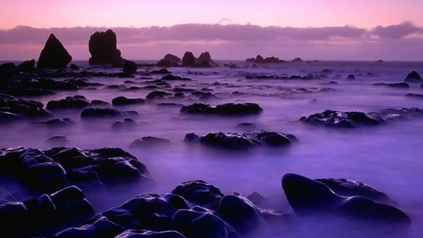 Ngỡ ngàng với phong cảnh tuyệt đẹp tại đảo Nam New Zealand 24