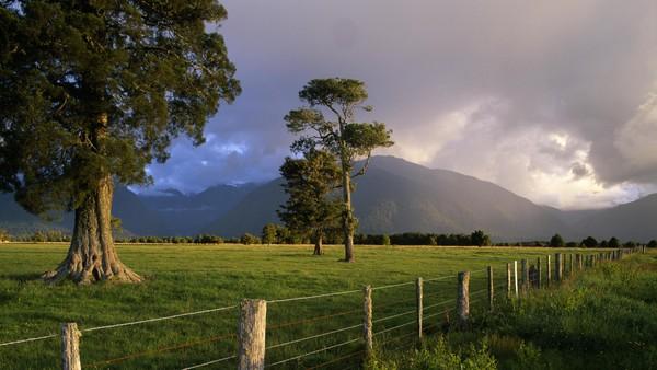 Ngỡ ngàng với phong cảnh tuyệt đẹp tại đảo Nam New Zealand 3