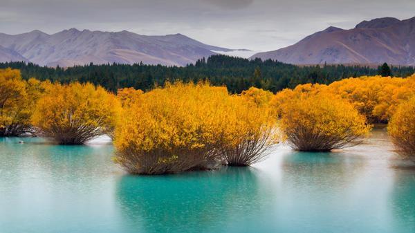 Ngỡ ngàng với phong cảnh tuyệt đẹp tại đảo Nam New Zealand 10