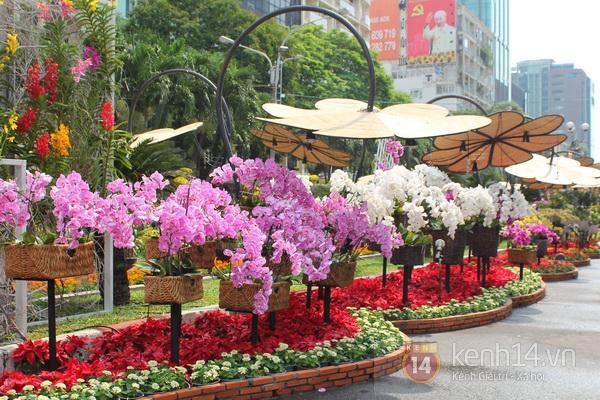 Những hình ảnh đầu tiên về đường hoa Nguyễn Huệ 2013 4