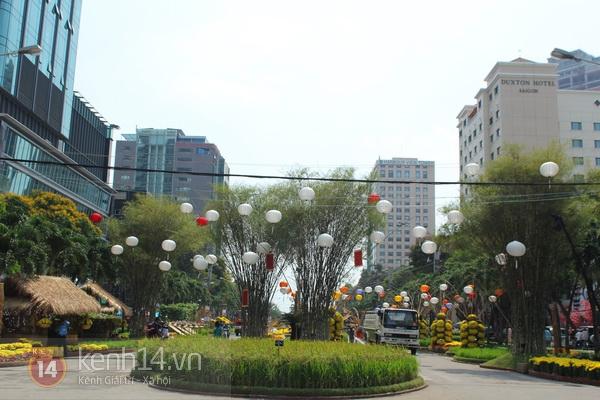 Những hình ảnh đầu tiên về đường hoa Nguyễn Huệ 2013 10