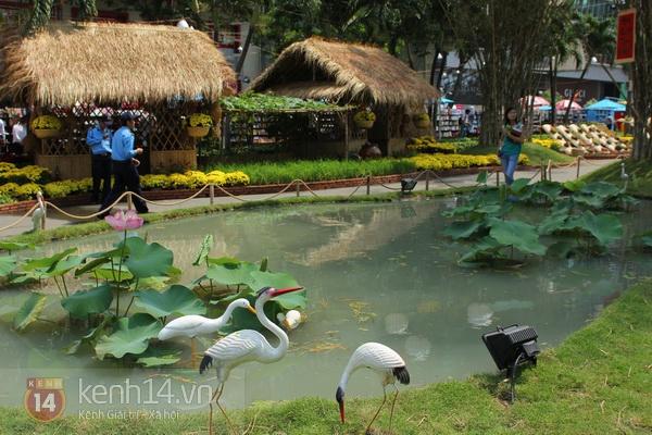 Những hình ảnh đầu tiên về đường hoa Nguyễn Huệ 2013 11