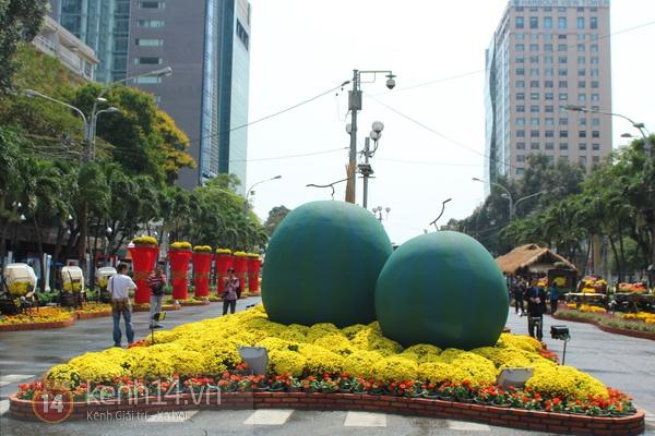 Những hình ảnh đầu tiên về đường hoa Nguyễn Huệ 2013 15
