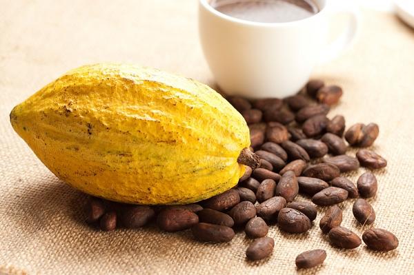 """Bí kíp uống cacao vào mùa đông """"đúng chuẩn"""" 1"""
