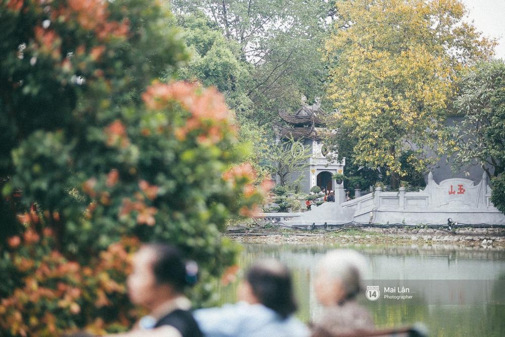 Hà Nội dịu dàng và xinh đẹp hơn trong sắc vàng của mùa cây thay lá - Ảnh 5.
