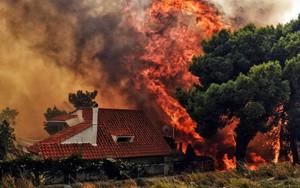 Nhìn lại những thảm họa rúng động thế giới năm 2018