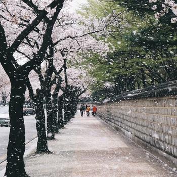 Hàn Quốc: Nếu không biết đánh son, không shopping thì mình đi đâu nơi kinh đô nhan sắc này? - Ảnh 19.