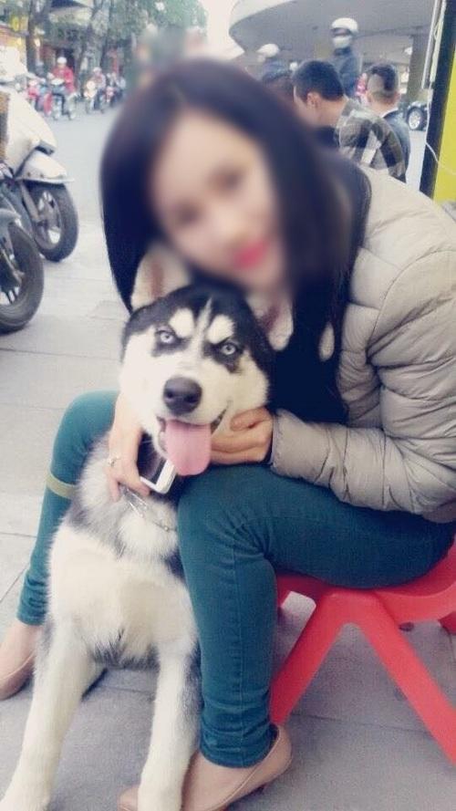 Cô gái cho bạn thân mượn chó cưng Husky để vượt qua stress, bạn bán chó lấy 2 triệu tiêu xài - Ảnh 1.