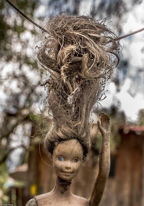 Cơn ác mộng Isla de las Munecas: Hòn đảo với hàng nghìn con búp bê kinh dị được treo lủng lẳng trên cây - Ảnh 19.