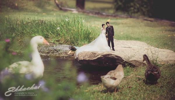 Nếu bạn chưa có ý tưởng chụp ảnh cưới sao cho hấp dẫn, hãy xem bộ ảnh này - Ảnh 22.