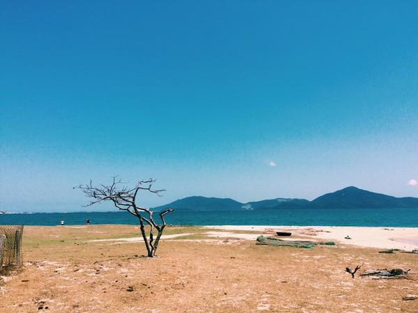 Tất tần tật mọi điều cần biết để có trải nghiệm mỹ mãn tại đảo Điệp Sơn - Ảnh 1.