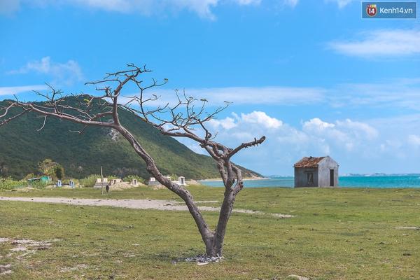Năm nay, đây sẽ là những hòn đảo hút giới trẻ nhất - Ảnh 4.