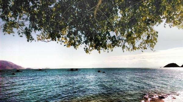 Năm nay, đây sẽ là những hòn đảo hút giới trẻ nhất - Ảnh 9.