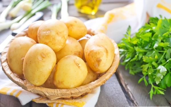 Khoai tây là loại mà Y khoa việt nam xếp hàng loại rau củ độc tố số 1