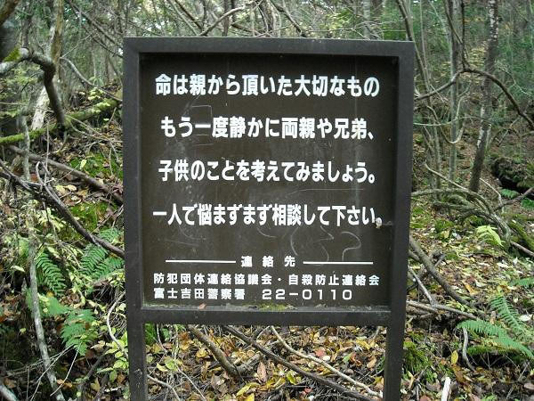 Giải mã bí ẩn lạnh gáy trong khu rừng tự sát 4