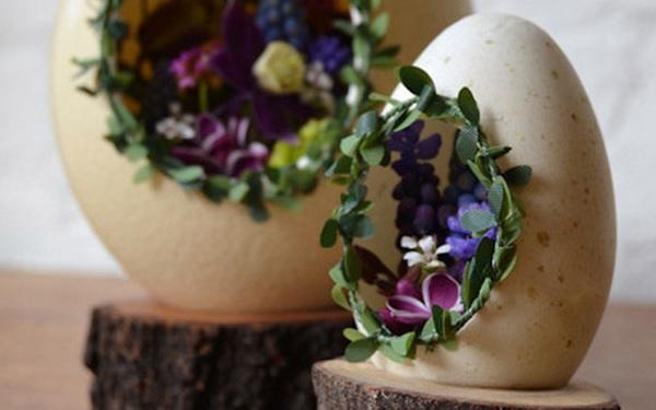 Vườn cây tí hon trong chiếc vỏ trứng nhỏ xíu