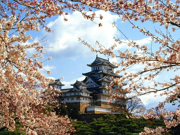 10 điều nhất định phải làm khi đi du học Nhật Bản - Ảnh 2.