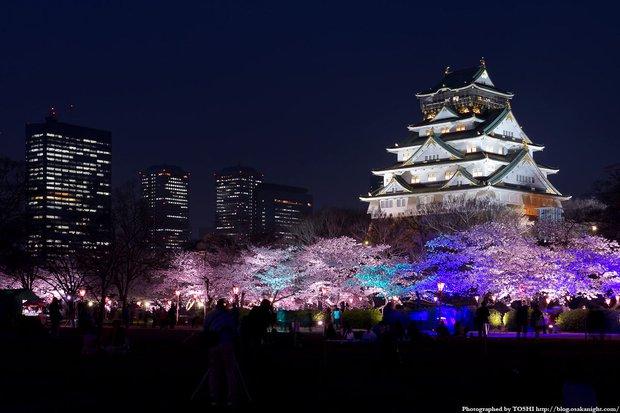 10 điều nhất định phải làm khi đi du học Nhật Bản - Ảnh 10.