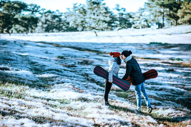 Cánh đồng tuyết đẹp đến ngỡ ngàng ở Đà Lạt - Ảnh 15.